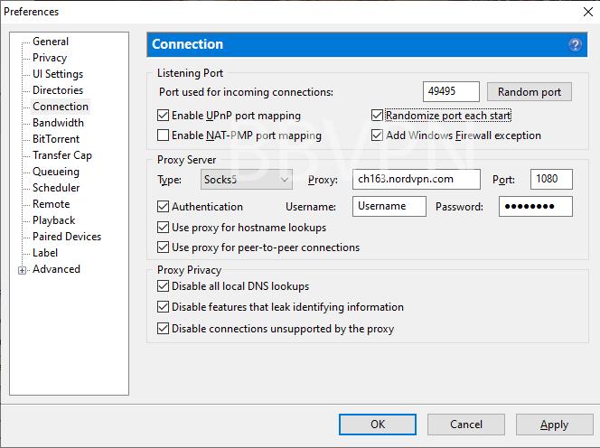 SOCKS5 proxy setup in BitTorrent client
